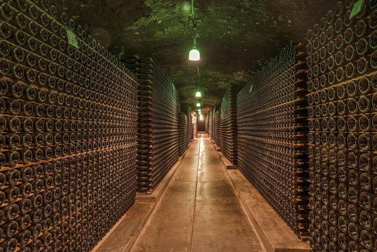 Wein Gutedel